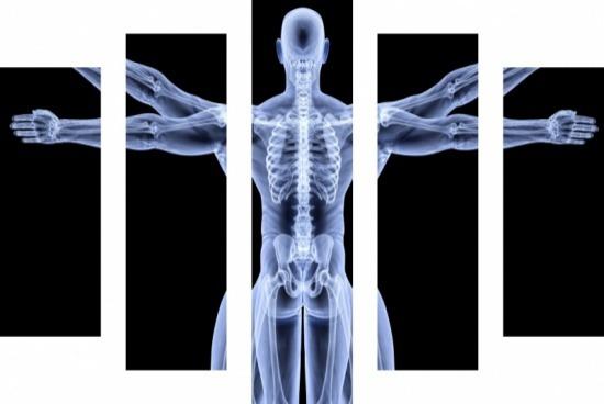 Inteligência Artificial possibilita identificação precisa da glândula prostática através de ressonância