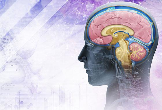 Papel do exame Freelite® no diagnóstico da Esclerose Múltipla