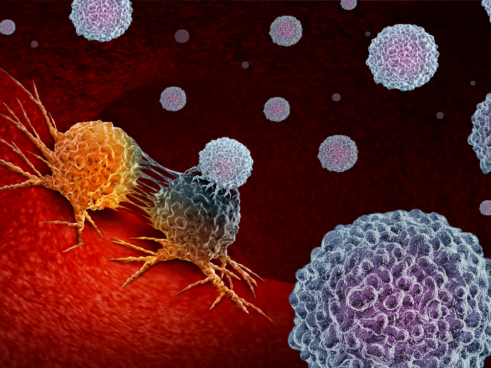 Siemens Healthineers promove workshop gratuito sobre Oncologia