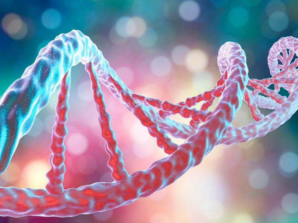 Exposição ao chumbo pode causar modificações no DNA mesmo em baixas concentrações